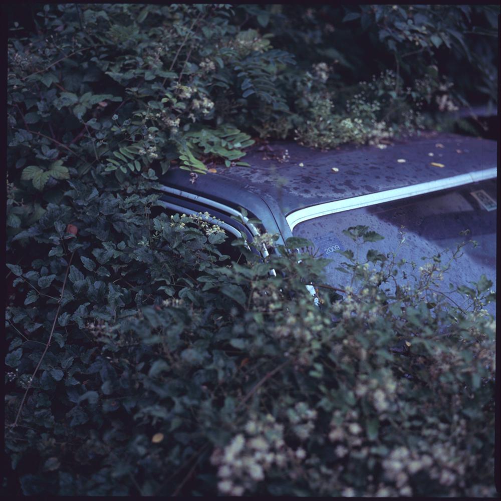 abandoned mercedes-benz